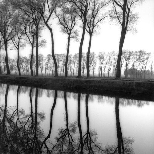 Sally Gall, Bruges, 1986