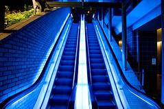Blueness (Ballet Lausanne) Tags: night tokyo escalator kachidoki d300 thetokyotowers thetokyotowersmidtowers