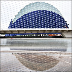 To square a circle (Maerten Prins) Tags: bridge reflection water valencia architecture modern circle spain architect cables calatrava squaredcircle harp curve santiagocalatrava cityofartsandsciences gora pontdelassutdelor