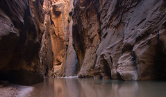 The Narrows (Ziemek T) Tags: utah hiking backpacking zion wallstreet zionnationalpark slotcanyon thenarrows