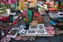 Jalgachi Seafood market 2