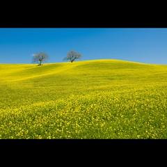 (Vincenzo D'Ortenzio) Tags: tuscany toscana valdorcia colorphotoaward vincenzodortenzio thedortenzios