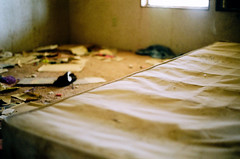 Bed (CourtneyTheGreat.) Tags: california color film bed random dirty creepy clothes abandonedhouse mattress saltonsea 2010 bombaybeach abandonedroom abandonedbed courtneymccutcheon