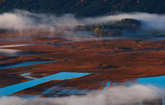 Cerkniko jezero (happy.apple) Tags: morning autumn fall fog landscape slovenia slovenija otok jesen jutro megla cerknicalake cerknikojezero intermittentlake presihajoejezero