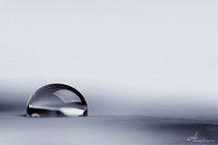 Pure [ Explore ] (ANOODONNA) Tags: macro drop explore pure صافي sigma105mmf28exdgmacro قطرة ماكرو canoneos50d نقي anoodonna العنودالرشيد alanoodalrasheed