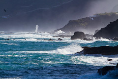 Brandung - Surge (Frankonius) Tags: morning sea meer atlantic tenerife teneriffa surge morgen atlantik brandung earlymorningfog frhnebel flickrclassique