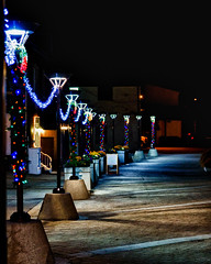 Path to a changing season (Pam Wamboldt) Tags: christmas ontario streetlights path christmaslights pathway brampton bramptontreelighting
