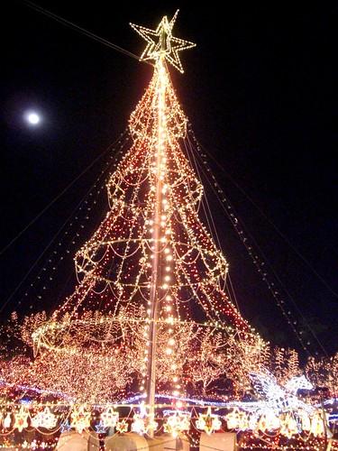 備北丘陵公園 イルミネーション 2010 クリスマスツリー