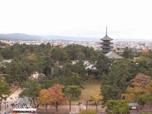 奈良県庁屋上展望台-12