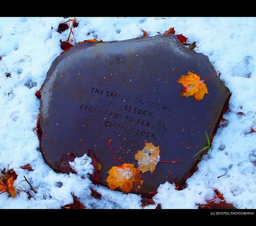Poem: Nature's Tick-Tock
