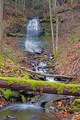 Roadside Falls (+David+) Tags: waterfall fingerlakes route38 mossylog temporarywaterfall nearmoravia owasolake