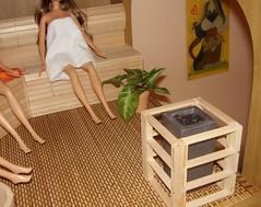 la brace (Cici-chan) Tags: miniature barbie diorama sauna