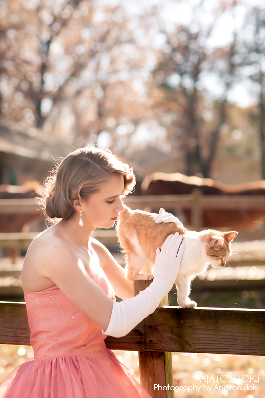 1951 prom dress shoot farm cat backlighting