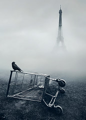 Paris.. (Latyrx) Tags: sky paris bird tower grass fog clouds photomanipulation shopping nikon mood moody shoppingcart sigma atmosphere eiffel crow 1020mm toned spree tones 1020 d7000