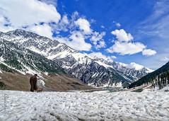 Snow 30 ... (Bijanfotografy) Tags: nikon nikond800 zeiss zeiss15mm zeissdistagon15mm28 snow mountainside mountains sonamarg kashmir jammukashmir jk india landscape