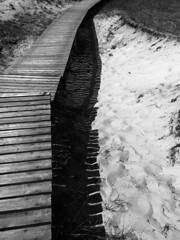 dünenweg (Ilka Christof) Tags: shadow blackandwhite bw sun sunshine germany deutschland lumix coast seaside sand dunes symmetry panasonic sonne schatten küste dünen ostdeutschland sonnenschein easterngermany