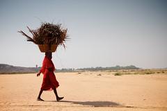 2010年5月印度一名婦女頭頂著木柴跨越過佛陀開悟所在地比哈爾邦的乾涸河床(JC Indie攝)