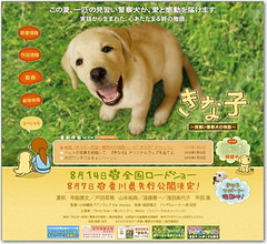 映画 「きな子」の特番が再放送され、当サイトのマスコット犬が出演します