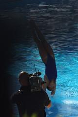Tuffo in diretta (foxwolf70) Tags: camera woman water girl sport drops movement dive movimento athlete acqua bergamo tuffo cameramen atleta gocce spruzzi trampolino festadellacqua