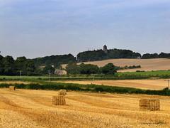 Harvest (smokingjoe1) Tags: wood autumn sky photoshop hedge fields bale hooberstand canong11