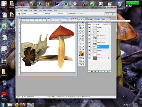 w_09-01-2010_slug-shroom
