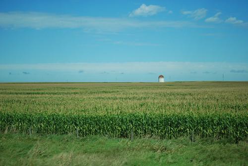 moving car photography - corn & silo MN