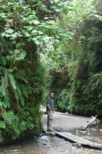 FernWall Trail