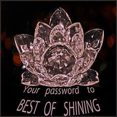 Invite Best of Shining