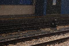 foto binario pioggia