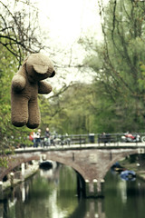 Lost Bear (Oh beautiful world.) Tags: bear city bridge canal utrecht sad thenetherlands hanging ohbeautifulworld hannekevollbehr