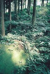 【熊空沒有蒼井優】20100808