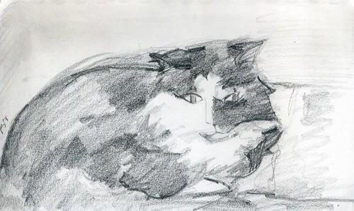 sketch240