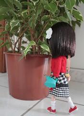 * Regando as Plantas *