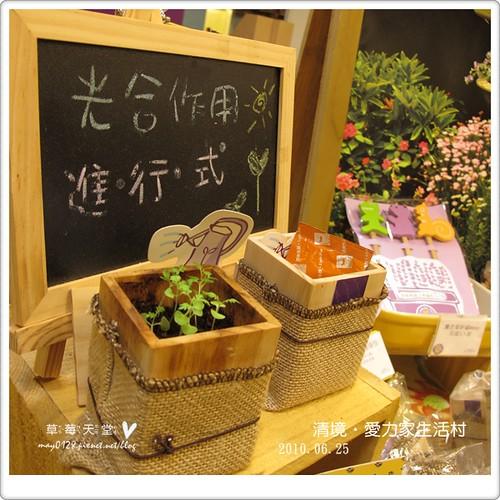 清境星巴克商圈33-2010.06.25
