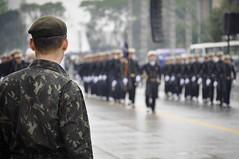 Olhar Atento (Levi Bianco) Tags: nikon sopaulo chuva desfile sp cultura marinha polcia patriotismo exrcito 7desetembro anhembi d90 desfilecvico instrumentosmusicais tropas forasarmadas desfilede7desetembro levibianco
