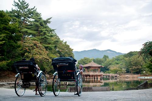 Sagi ike in Nara