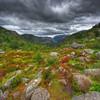 Norway - the trail to Preikestolen (Mariusz Petelicki) Tags: norway clouds norge scandinavia hdr preikestolen lysefjorden norwegia lysefiord vertorama mariuszpetelicki