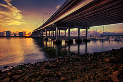 Blue Heron Bridge - Singer Island, Florida