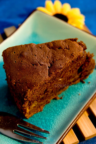 Chocolate pumpkin cinnamon cake