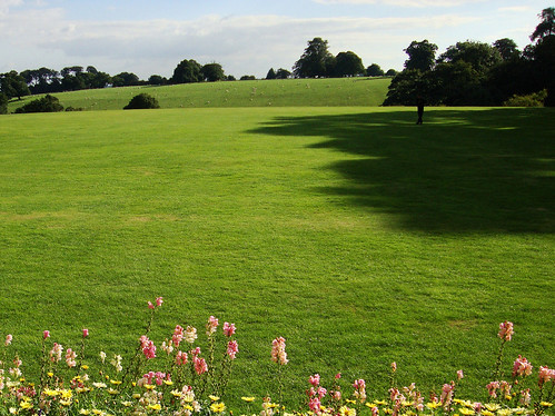 Upton House Fields