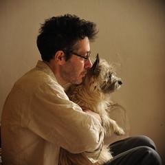 la tendresse du cairn (lachaisetriste) Tags: portrait chien nikon cairnterrier profil homme carré d700 4tografie