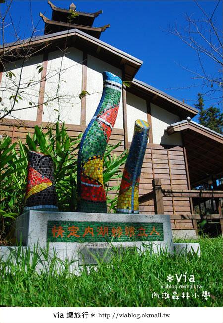 【溪頭一日遊】森林中的夢幻校園~內湖森林小學46
