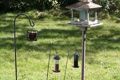 ontario stirling birdfeeders