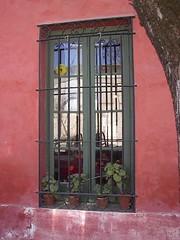 VENTANA CON MACETA (RIRAL10) Tags: paisajes de edificios san y antonio areco
