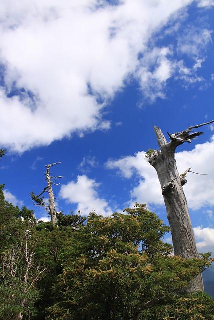 太鼓岩からの青空 in Yakushima