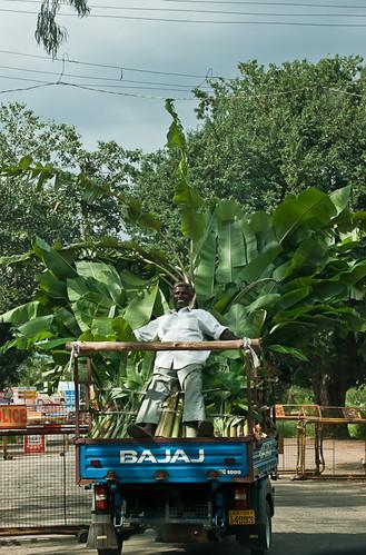 People, Karnataka - Chitra Aiyer Photography