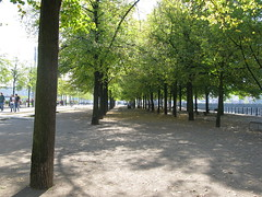 Tree-lined part on Museum Island