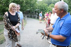 "Alligator Demonstration • <a style=""font-size:0.8em;"" href=""http://www.flickr.com/photos/49635346@N02/5021410860/"" target=""_blank"">View on Flickr</a>"
