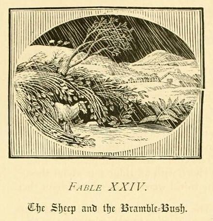Ovis et Rubus