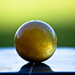 ball image, photo or clip art
